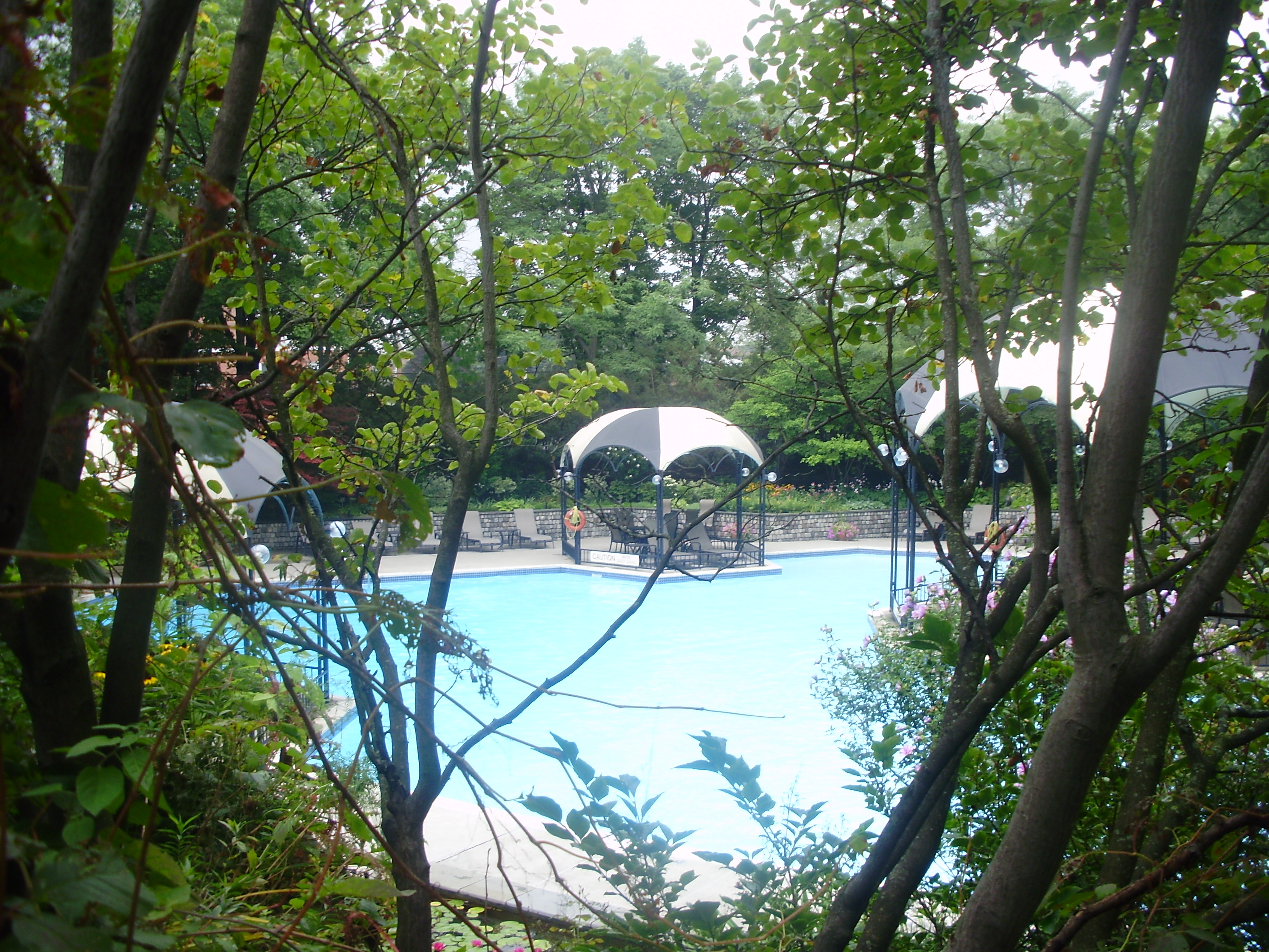 pool from BBQ